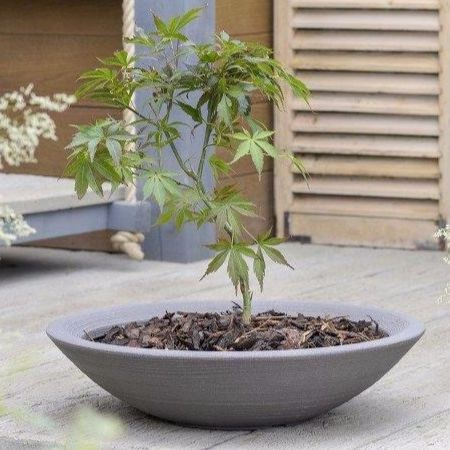 Stewart Varese Decorative Low Bowl Plastic Planter - Dark Brown