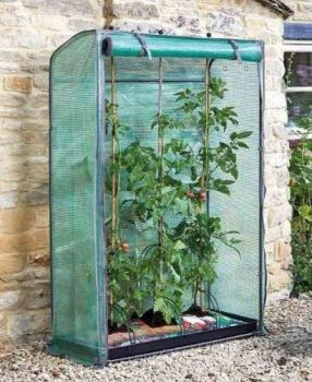 Smart Garden Tomato Plant GroZone Growhouse