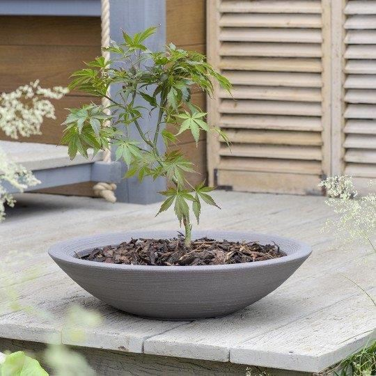 <!-- 004 -->Metal, Wood & Plastic Planters