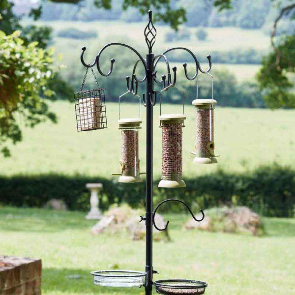 <!--014--> Wild Bird Care