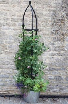 Smart Garden Oxford Metal Garden Obelisk 2.1m