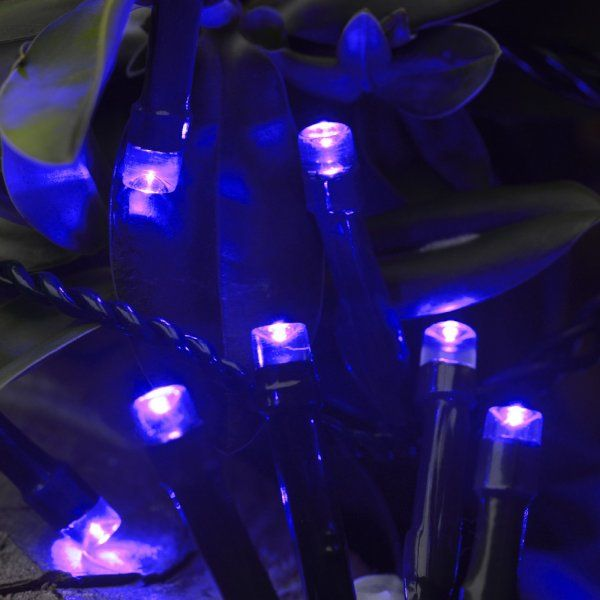 Smart Garden Battery String Lights 100 Blue LEDs