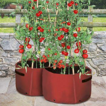 Haxnicks Tomato Patio Planter Tubs - 2 pack