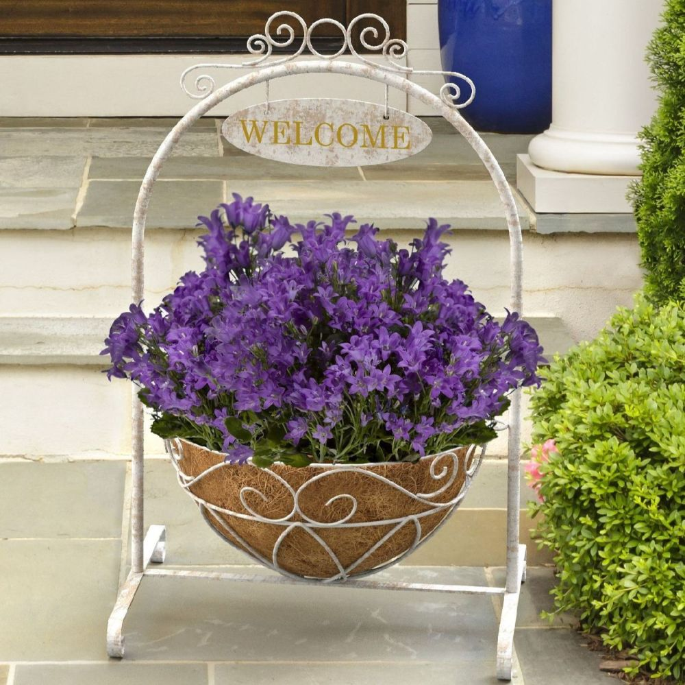 Panacea French Country Welcome Hanging Basket Planter Stand with Liner