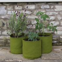 Haxnicks Vigoroot 10 Litre Pots Planter Tubs - 3 pack