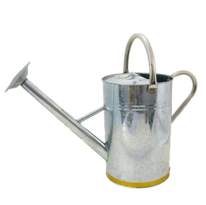 Kent & Stowe Galvanised Metal Watering Can 9L / 2 Gallons 34910