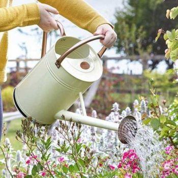 Smart Garden Steel Watering Can 9L / 2 Gallons  - Cream