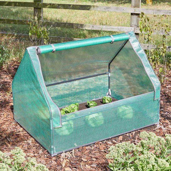 Smart Garden GroZone Seedling GroCloche Plant Cloche 6511011