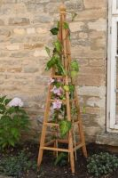 Smart Garden Wooden Garden Obelisk Natural Wood Tan 1.9m