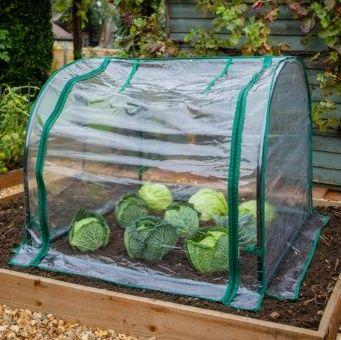 Gardman Medium Seedling Cloche Garden Plant Grow Tunnel 08794