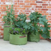 Haxnicks Vegetable Patio Planter Tubs - 3 pack