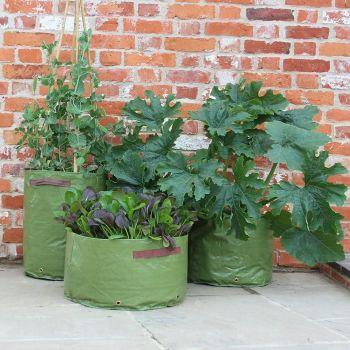 Haxnicks Vegetable Patio Planter Tubs - 3 pack