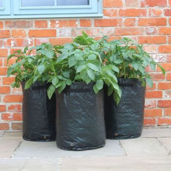 Haxnicks Potato Patio Planter Tubs - 3 pack