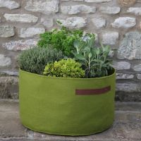 Haxnicks Vigoroot Herb Planter