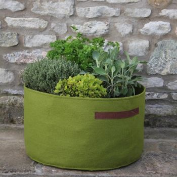 Haxnicks Vigoroot Herb Planter