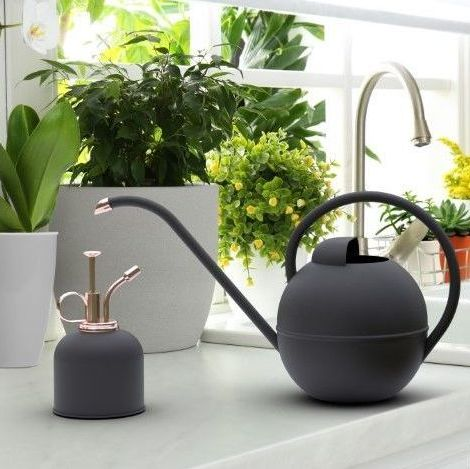 Panacea Watering Can & Mister Box Set