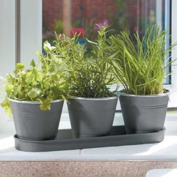 Smart Garden Windowsill Herb Pots  - 3 slate grey metal pots and tray