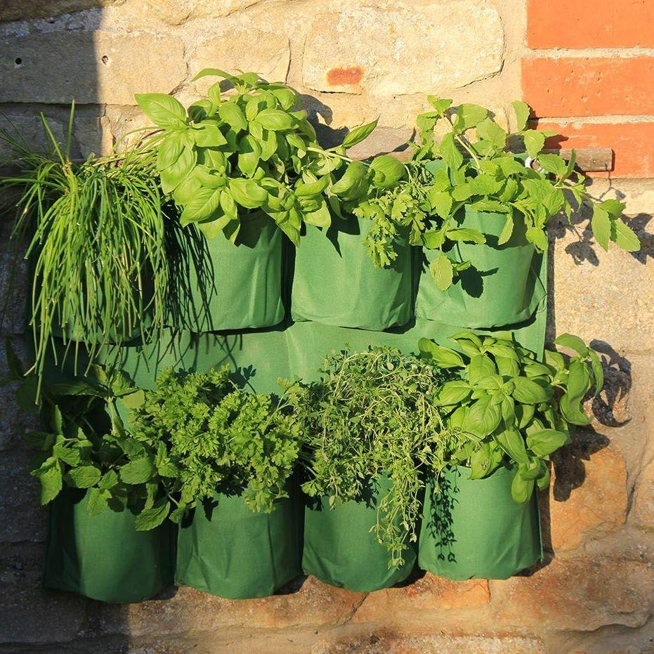Haxnicks Herb Wall Planter