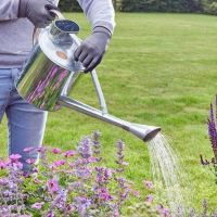 Smart Garden Long Reach Watering Can 9L / 2 Gallons  - Galvanised Steel