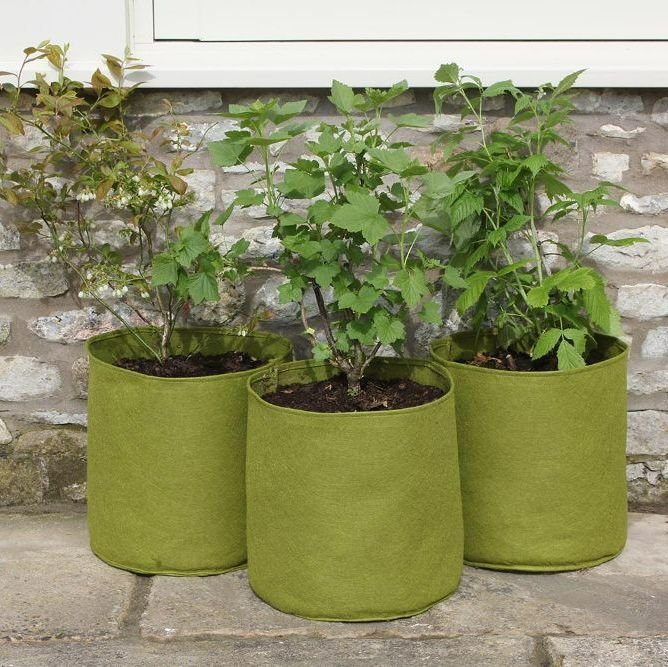 Patio Planters, Tubs and Herb Pots