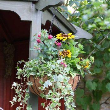 Smart Garden Metal Hanging Basket with Liner 16''  - set of two