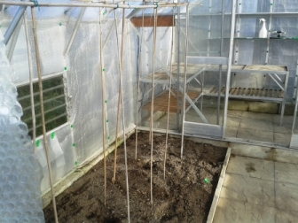 Greenhouse Cleaning - After 1