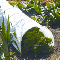 3m Polythene Grow Tunnel / Cloche