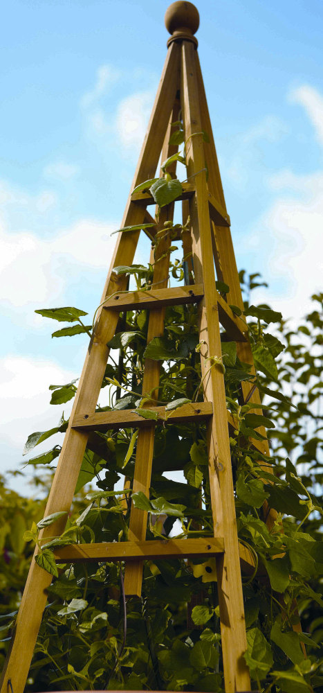 Smart Garden Tan Wooden Obelisk Natural Wood Climbing Plant Support