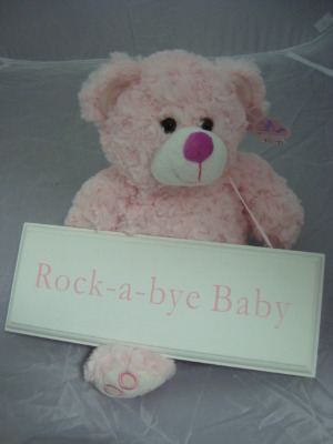 Baby Teddy With Sign