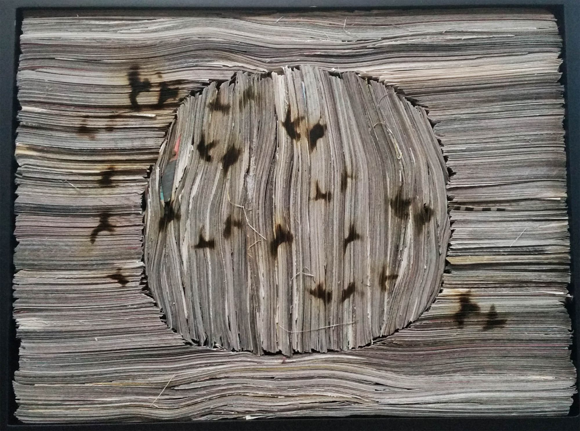 newsapaper artwork by Tracey Falcon, title  MIGRATION. newspaper resembling wood drawn on with a blowtorch