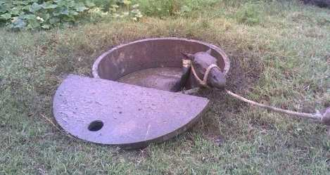Septic Tank Dangers