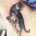 sacred ink tiger