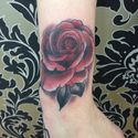 sacred-ink-rose