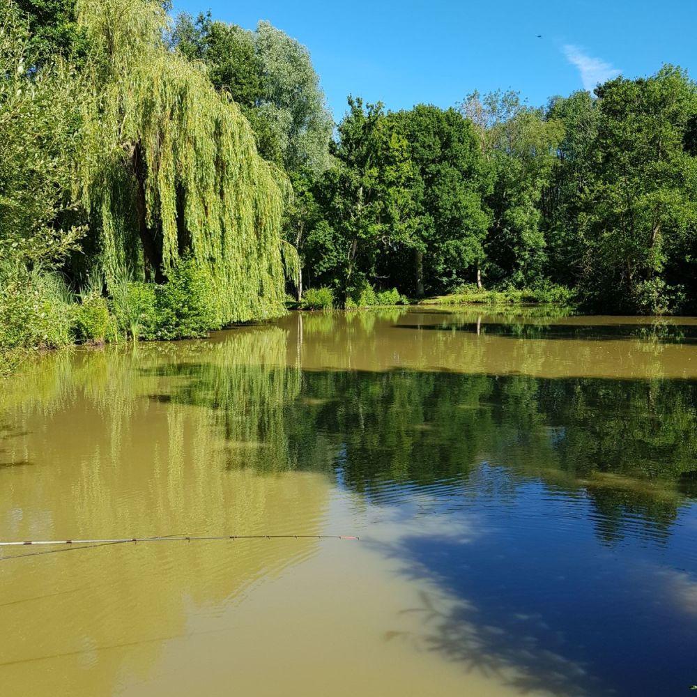 lake 2020