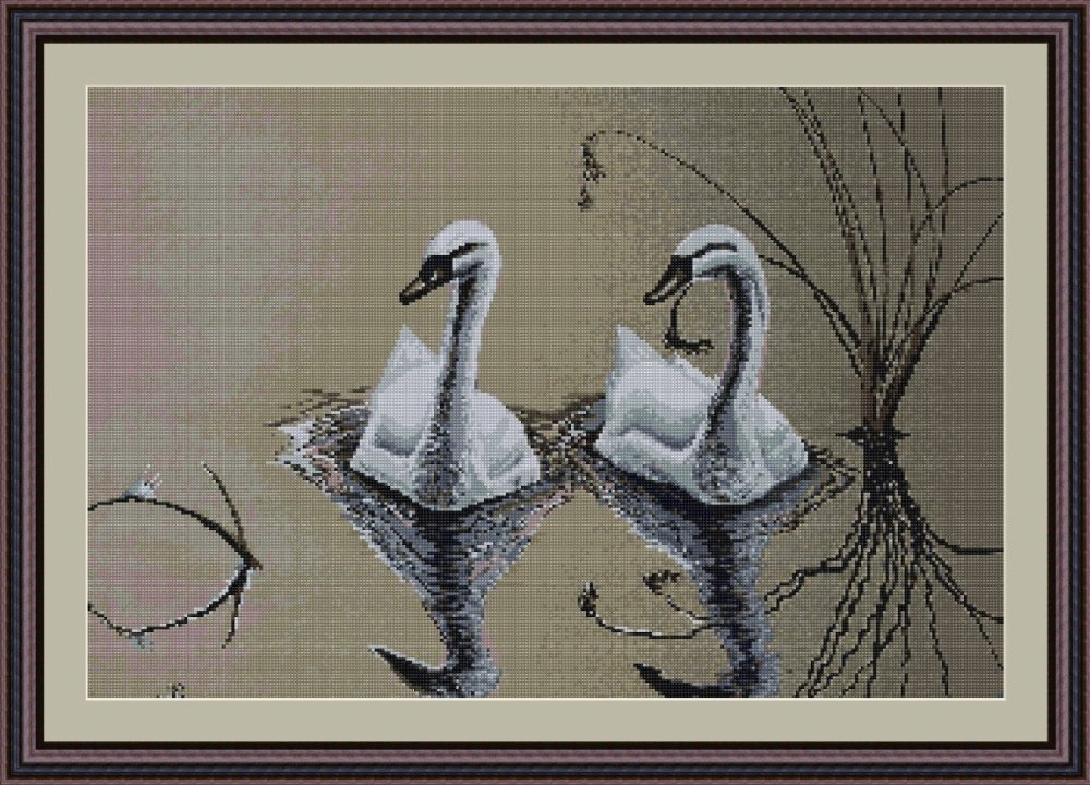 Swan Pair on the Lake - Luca-S