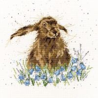 Bright Eyes cross stitch - Hannah Dale
