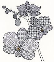 Orchid Blackwork Embroidery - Bothy Threads