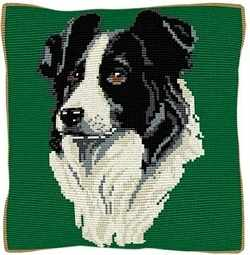 Border Collie Green - Cross Stitch Kit (printed canvas)