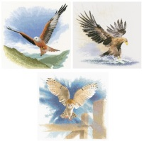 Red Kite, Eagle & Owl - John Clayton Cross Stitch