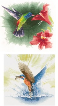 Hummingbird & Kingfisher in Flight - John Clayton