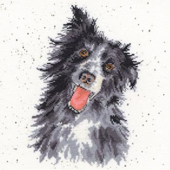 Collie Dog Cross stitch - Hannah Dale
