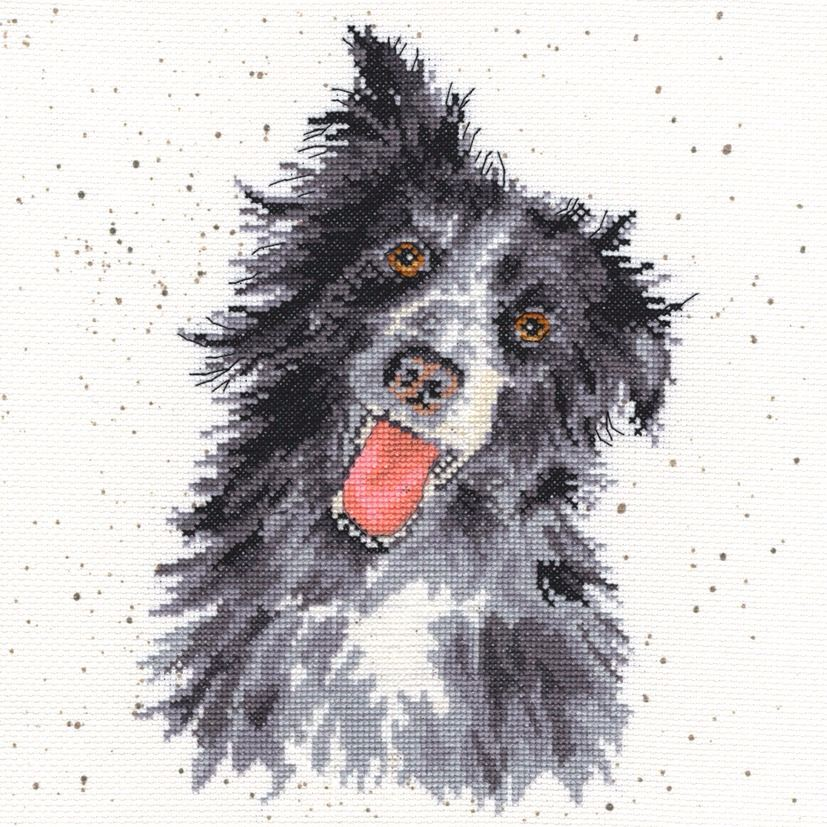 Collie Dog Cross stitch - Hannah Dale