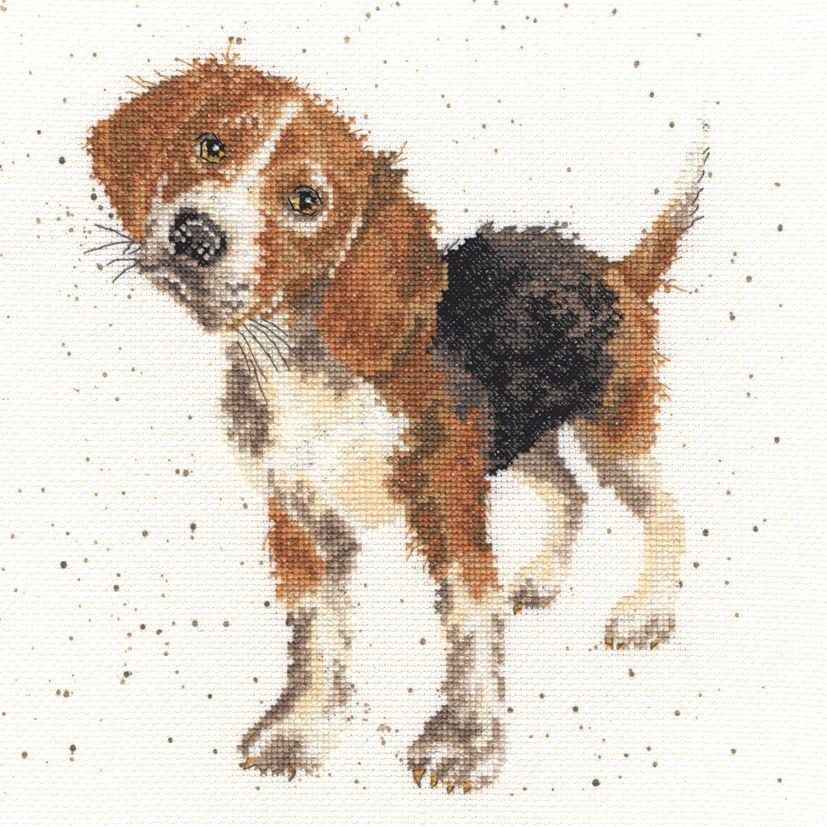 Beagle Dog Cross stitch - Hannah Dale