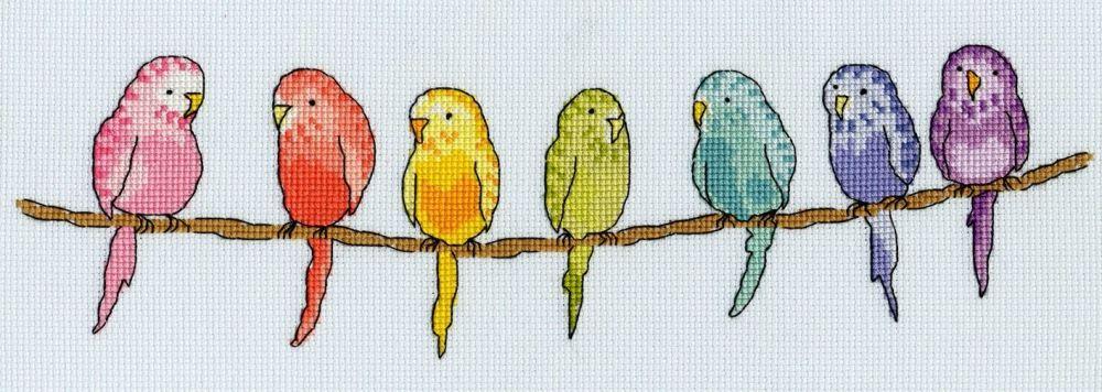Row of Budgies - Bothy Threads Cross Stitch