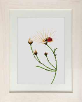 Communciation Ladybird Cross Stitch - Luca-S