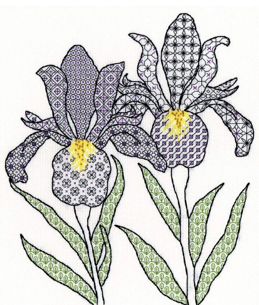 Irises Blackwork Embroidery - Bothy Threads