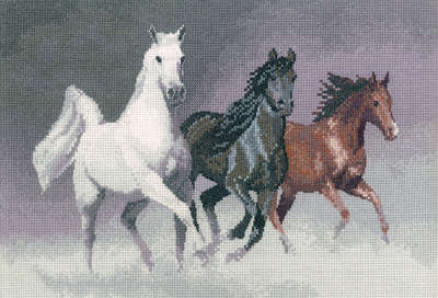 Horses, Ponies & Donkeys