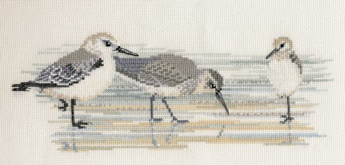 Waders 3 Bird Cross Stitch