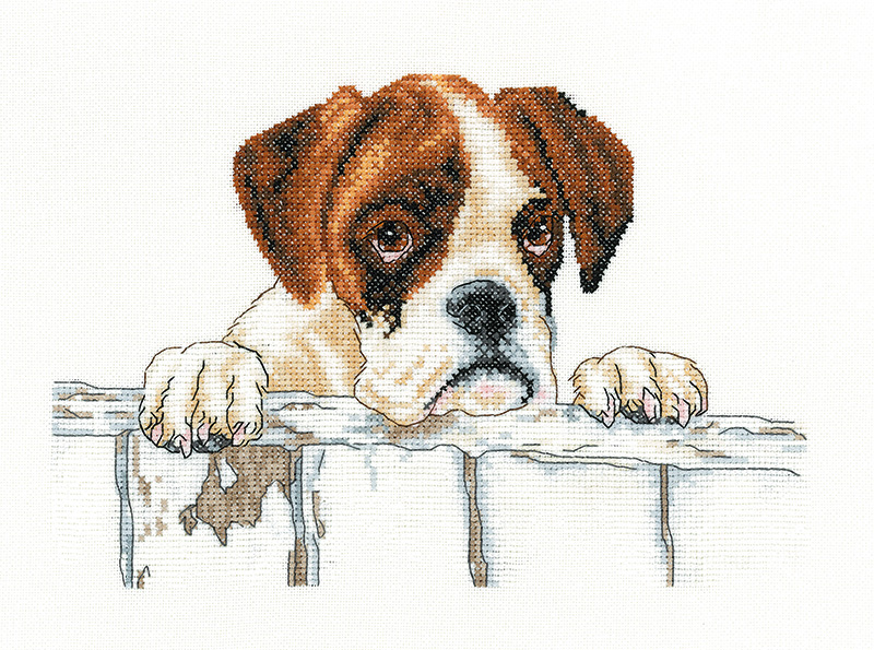 Bailey - Boxer Dog Cross Stitch
