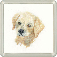 Golden Labrador Puppy Coaster Kit